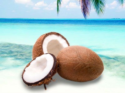 coconut-meat