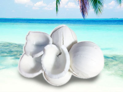 white-coconut-meat